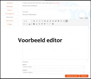 Artikel plaatsen voorbeeld editor